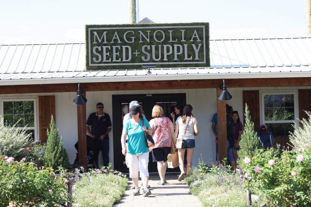 Magnolia-Seed-Supply