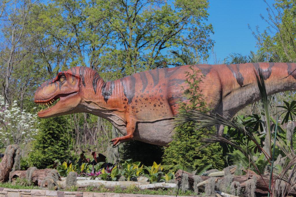 Dinosaurus STL 5